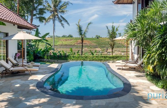 Villa Damai - Pool view
