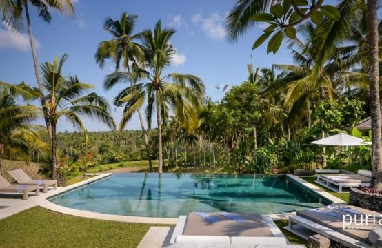 La Balian Villa - Pool