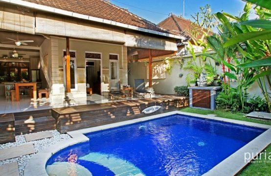 Villa Litan - Pool and Villa