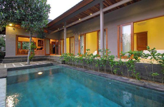 Villa Nangka - Pool and The villa