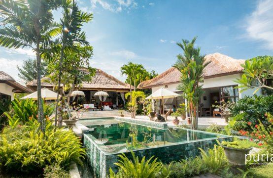 Villa Tibu Indah - Pool and Villa