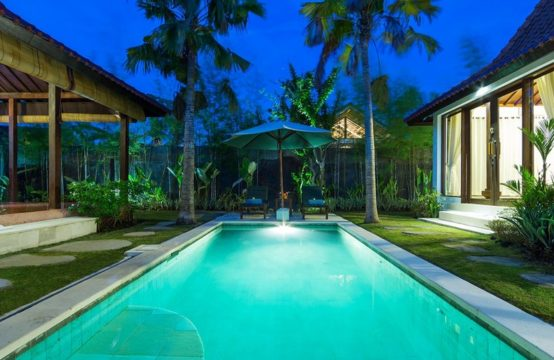 Anyar Sari Villa - Pool