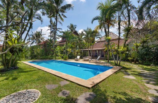Villa Splendid - pool