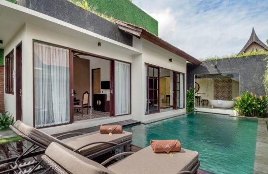 Villa Angsoka - Pool