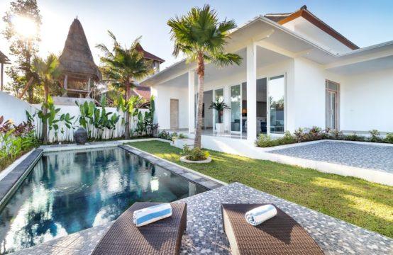 Villa Mas Anga - Pool