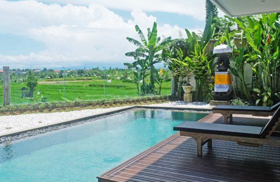 Villa Dew - 4 Bedrooms Villa in Canggu