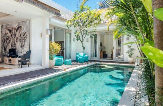 Villa Safari - Pool