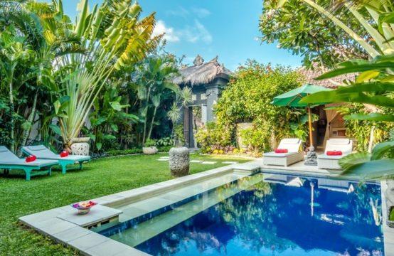 Villa-Balissima- Pool